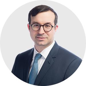 David Feintuch, Partner